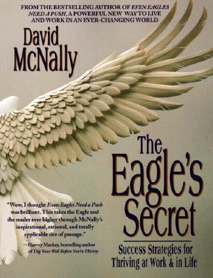 Image for The Eagle's Secret