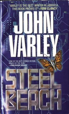 Image for Steel Beach