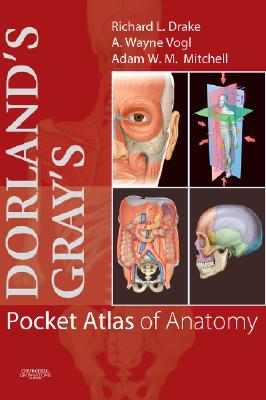 Image for Dorland's/Gray's Pocket Atlas of Anatomy, 1e (Dorland's Medical Dictionary)