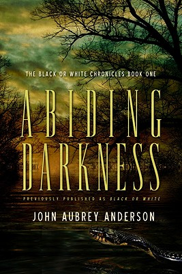 Image for Abiding Darkness (The Black or White Chronicles Series)