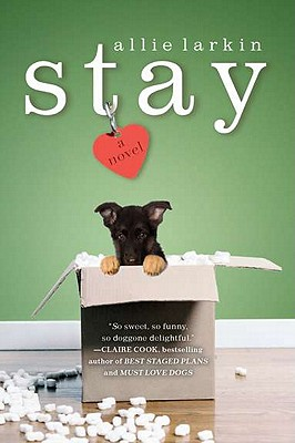 Image for Stay: A Novel