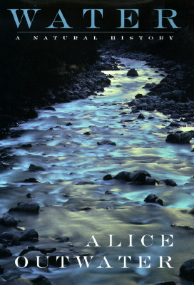 Image for Water: A Natural History