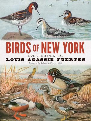 Image for Birds of New York: Over 100 Plates