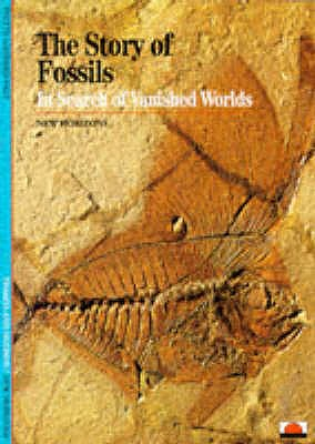 Image for The Story of Fossils: In Search of the Vanished Worlds (New Horizons)