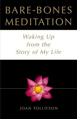Image for BARE-BONES MEDITATION WAKING UP FROM THE STORY OF MY LIFE