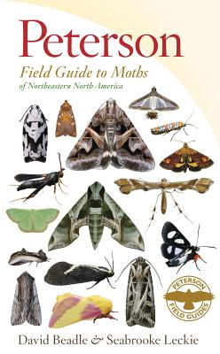 Image for Peterson Field Guide to Moths of Northeastern North America (Peterson Field Guides)