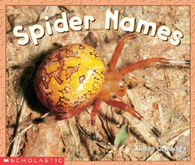 Image for Spider Names (Emergent Readers)