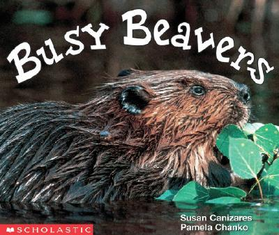Image for Busy Beavers (Emergent Readers)