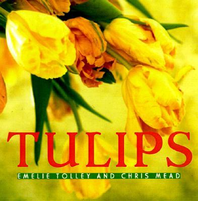 Tulips, Chris Mead