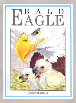 Image for Bald Eagle