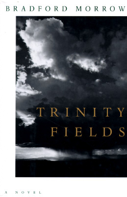 Image for TRINITY FIELDS