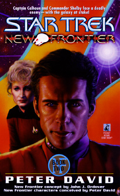 Image for Into the Void (Star Trek New Frontier, No 2)