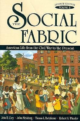 Image for The Social Fabric: American Life from the Civil War to the Present