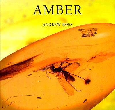 Image for Amber