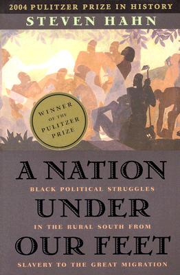 Image for A Nation Under Our Feet: Black Political Struggles in the Rural South from Slavery to the Great Migration