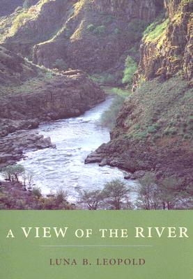 Image for A View of the River