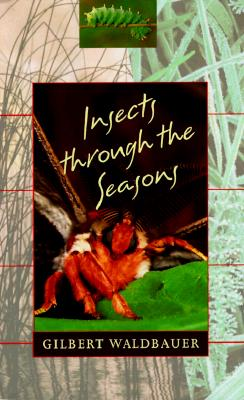 Image for Insects through the Seasons