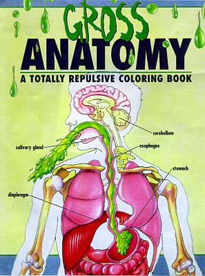 Image for The Gross Anatomy, an Off-Color Coloring Book