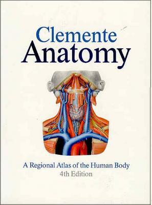 Image for Anatomy: A Regional Atlas of the Human Body