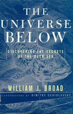 Image for UNIVERSE BELOW : DISCOVERING THE SECRETS