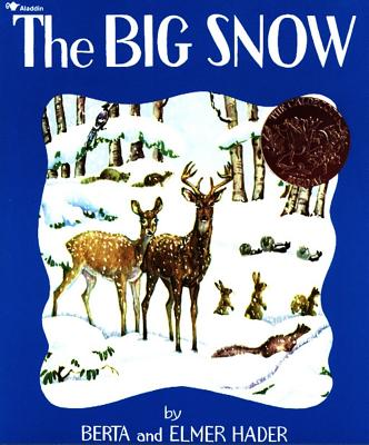 Image for The Big Snow