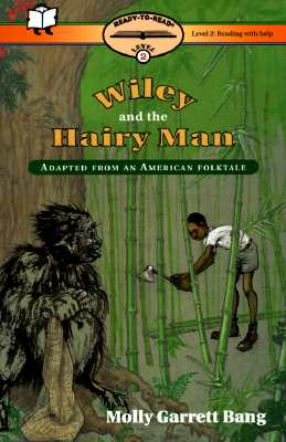 Image for Wiley and the Hairy Man