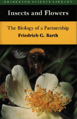 Image for Insects and Flowers:  The Biology of a Partnership