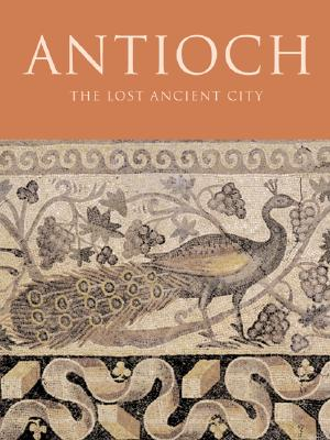 Image for Antioch: The Lost Ancient City