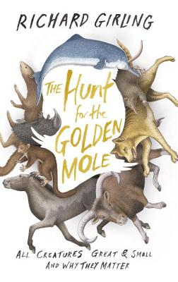 Image for The Hunt for the Golden Mole: All Creatures Great & Small and Why They Matter