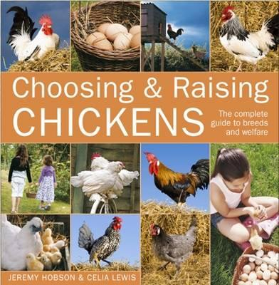 Image for Choosing & Raising Chickens: The Complete Guide to Breeds and Welfare