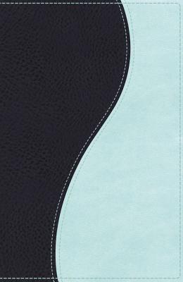 "Image for ""''NKJV Ultraslim Bible (Sea BlueSea Foam Imitation Leather, Thumb Indexed)''"""