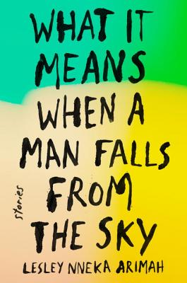 Image for What It Means When A Man Falls From The Sky