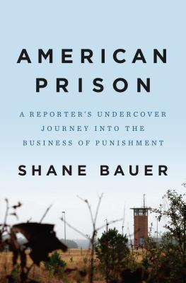 Image for American Prison: A Reporter's Undercover Journey into the Business of Punishment