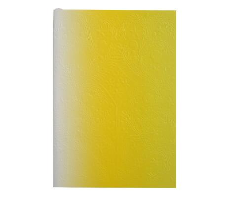 Image for Neon Yellow B5 Ombre Paseo Notebook