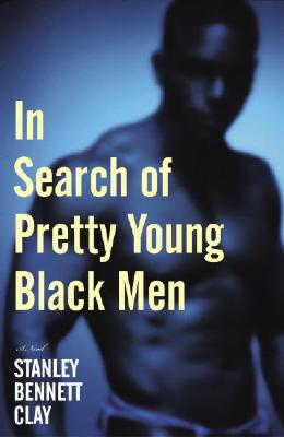 Image for In Search of Pretty Young Black Men: A Novel