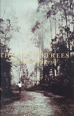 The Sea of Trees, Yannick Murphy