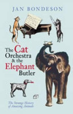 Image for Cat Orchestra & the Elephant Butler