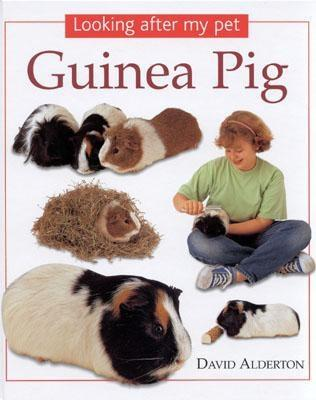 Image for Guinea Pig (Looking After My Pet) by Alderton, David