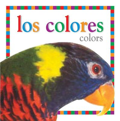 Los Colores / Colors (My First Books), DK