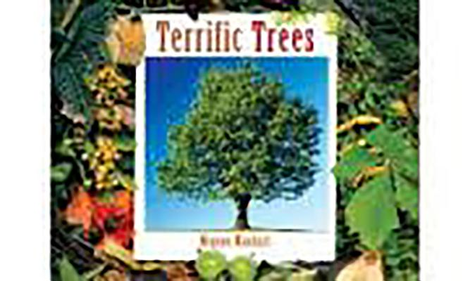Image for Terrific Trees