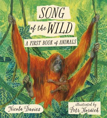 Image for Song of the Wild: A First Book of Animals