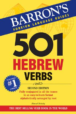 Image for 501 Hebrew Verbs (501 Verb Series)