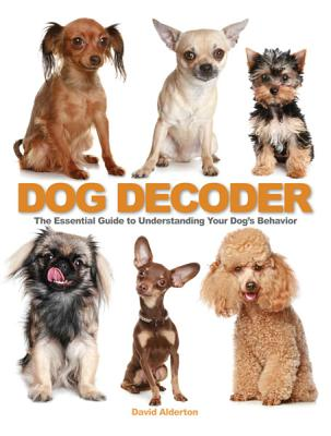 Image for Dog Decoder: The Essential Guide to Understanding Your Dog's Behavior