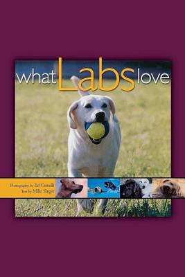 Image for What Labs Love