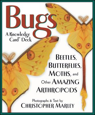 Image for Bugs: Beetles, Butterflies, Moths, and Other Amazing Arthropods Knowledge Cards Deck
