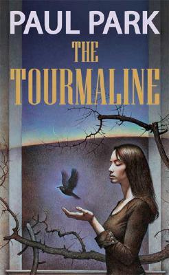 The Tourmaline, Paul Park