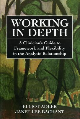 Image for Working in Depth: A Clinician's Guide to Framework and Flexibility in the Analytic Relationship