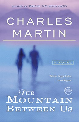 Image for MOUNTAIN BETWEEN US