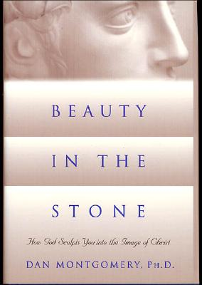 Image for Beauty in the Stone: How God Sculpts You into the Image of Christ