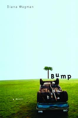 Image for Bump